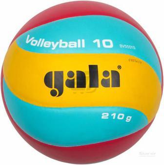 Волейбольний м'яч Gala Training BV5551SB р. 5